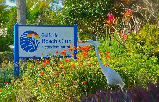 Gulfside Beach Club: Entrance gardens