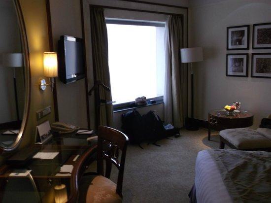 Shangri-La's Eros Hotel : room view
