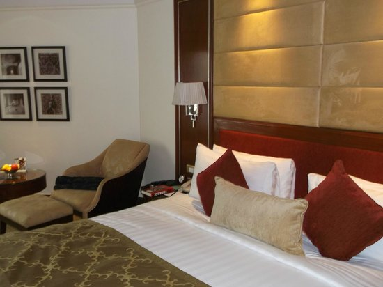 Shangri-La's Eros Hotel: room view