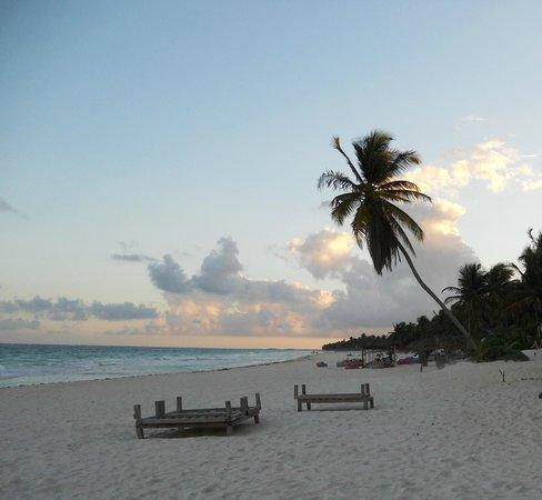 Amelie Tulum:                   la spiaggia davanti all'hotel