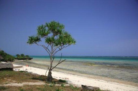 Nyali Beach照片