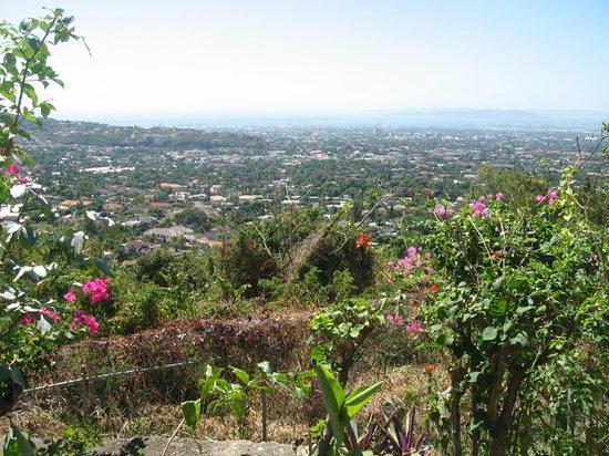 نتسفورد كورت هوتل:                   Kingston, Jamaica                 