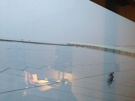 Grand Hyatt DFW:                   My view from my 1st floor room