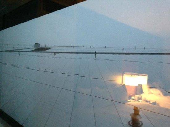 Grand Hyatt DFW:                   View from room