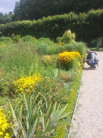 Chateau de Villandry:                   Il giardino del sole