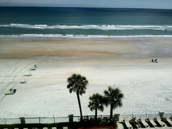 Daytona Beach Resort and Conference Center:                   Morning Beach