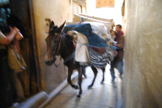 Bab Al Madina:                                     CALLE DE FÉZ