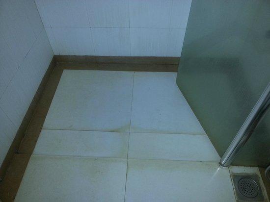 لا جولز كورت:                   Mould in the bathroom                 