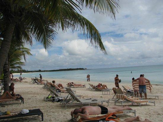 Catalonia Royal Tulum:                   plage coté nord