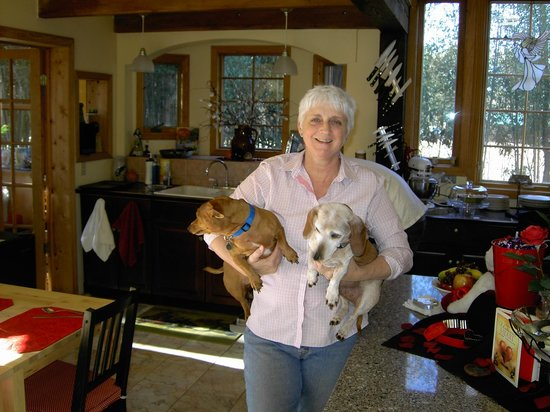 Bella La Vita Inn: Lisal and her 2 wonderful little dogs