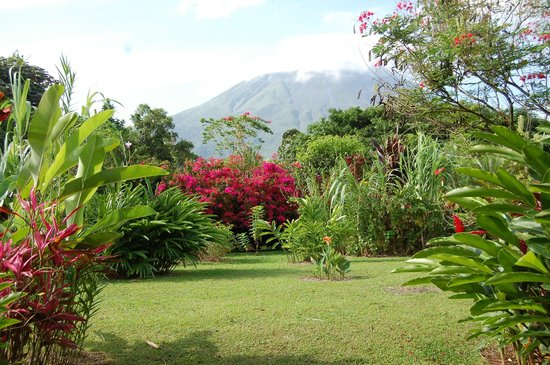 Volcano Lodge & Springs : View from room/patio
