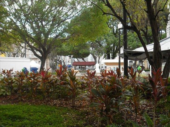 Plaza of Delights (Plaza de las Delicias): Plaza Square