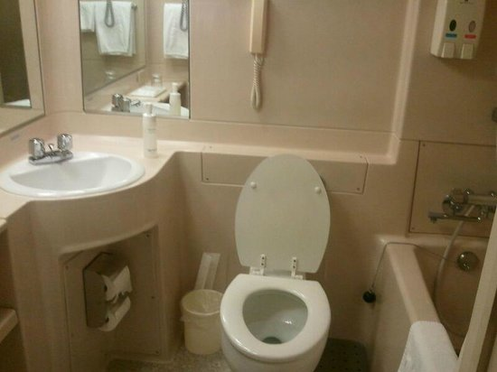 Hotel Nikko Narita:                   Bathroom in my single room, clean but very tiny