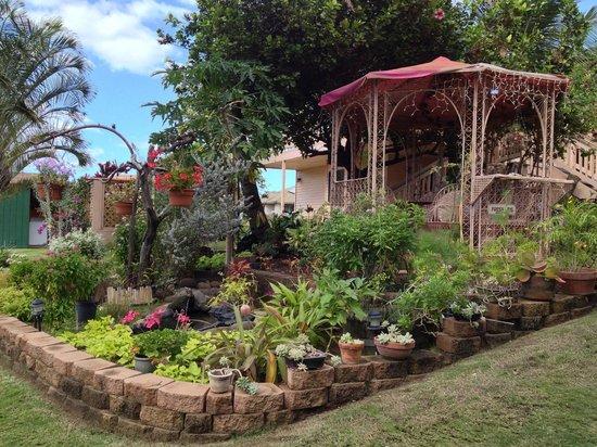Nona Lani Cottages : Garden