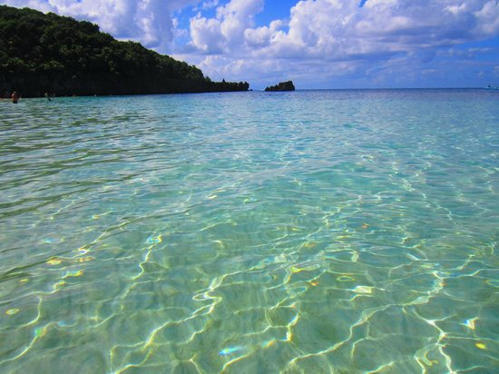 West Bay, Honduras:                   The beautiful crystal clear water. Stingrays swam by our feet.