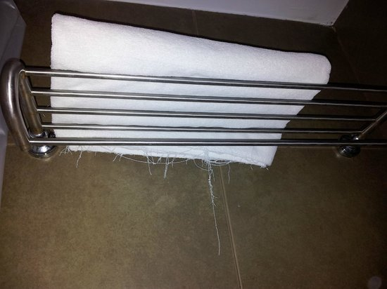 Nora Lakeview Hotel:                   shredded towels