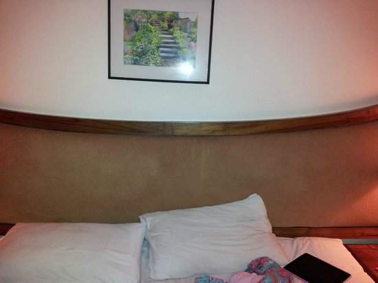 Nora Lakeview Hotel:                   dirty headboard