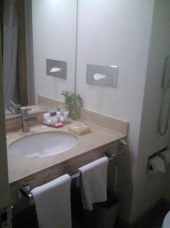 美洲嘉年華改革大道飯店照片