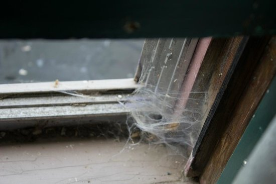 Grand Victorian Inn:                   Spider web