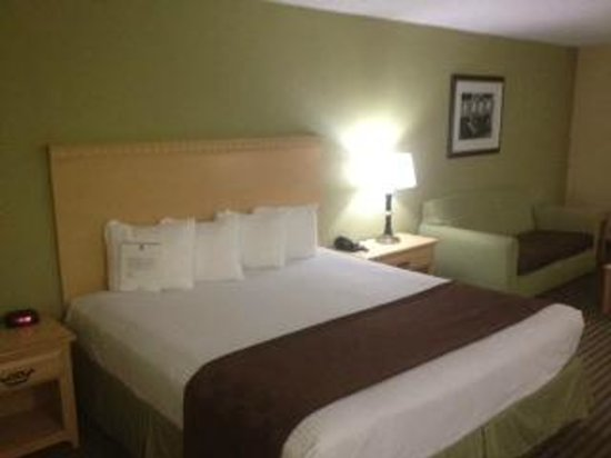 Best Western Galleria Inn & Suites : King Bed and Sofa