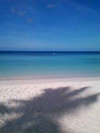Palau Pacific Resort:                   ホテル前のビーチ