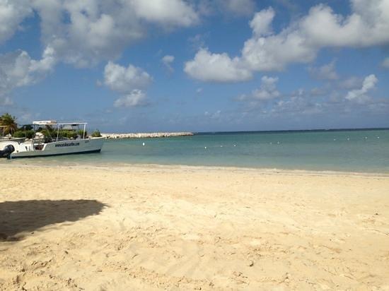 Hotel Riu Montego Bay:                   beautiful                 