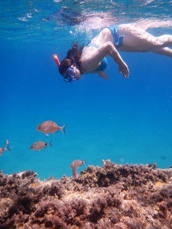 Snorkeling at Paradise Beach.