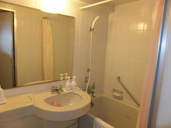 Creston Hotel :                   シングルバスルーム