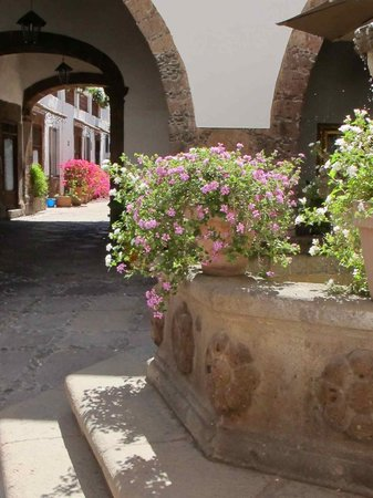 Hotel Layseca:                   The courtyard