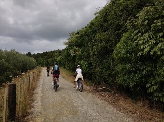 Twin Coast Cycle Trail Northland 사진