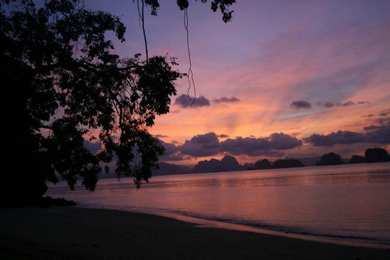 Koyao Island Resort:                   night sky