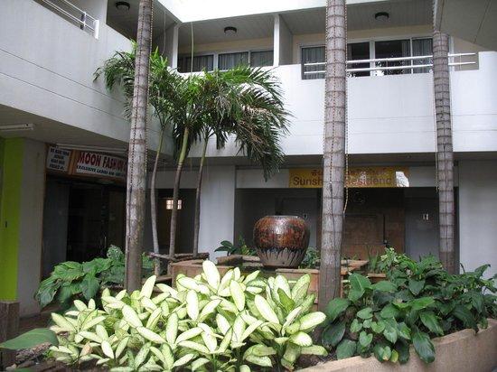 Sunshine Hotel & Residences:                   Сначало меня полелили на втором этаже, но после того как я нарисовала картинку