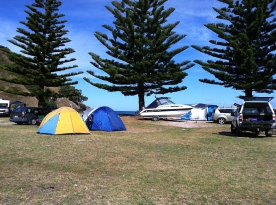Matauri Bay Holiday Park:                   looking out towards the Cavallie Islands