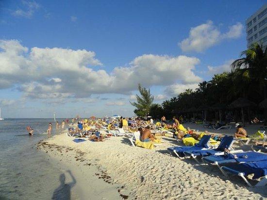 Grand Oasis Palm: zona de playa