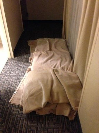 Hampton Inn Washington, DC - Convention Center:                                                                         our makeshift bed