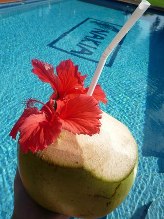 Nakia Resort & Dive:                                     fresh coconut from the property