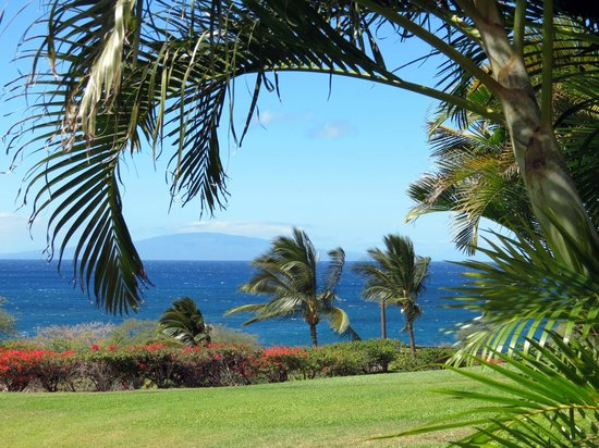 Maui Kamaole:                   The view