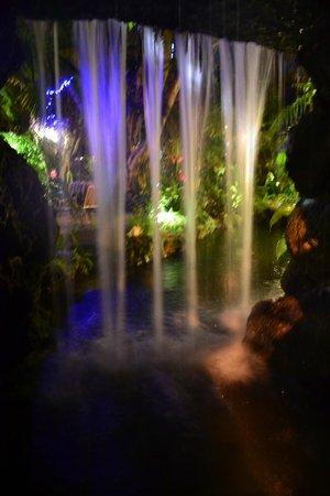 Everglades International Hostel:                   Waterfall at night.