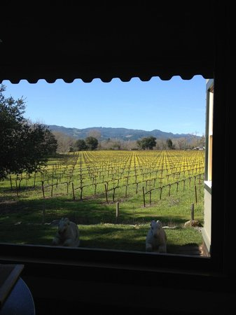 Platypus Wine Tours:                   Winery visit