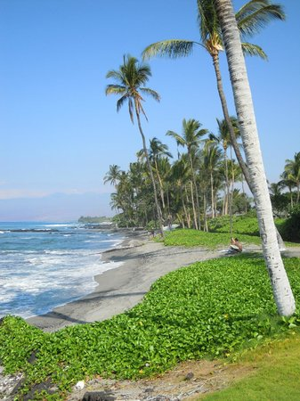 Fairmont Orchid, Hawaii: Lovely walk along the coastline