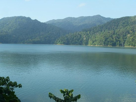 Belum Rainforest Resort: lake view