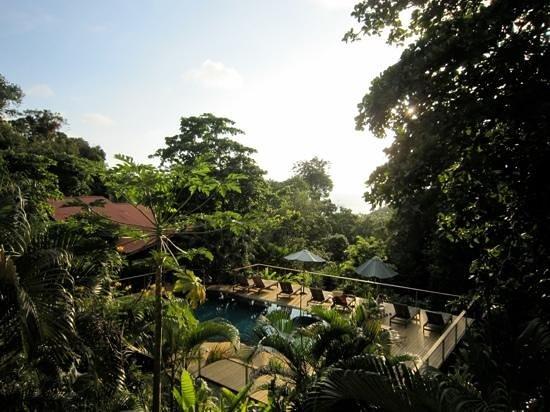 El Remanso Lodge:                                     vue depuis notre chambre