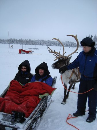 Levi Hotel Spa:                                     Reindeer Safari