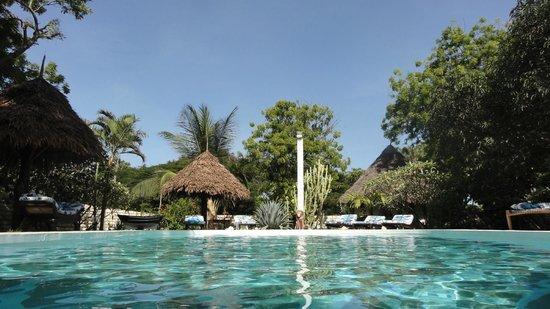 Luna House Malindi:                                     l'endroit est merveilleux et intime