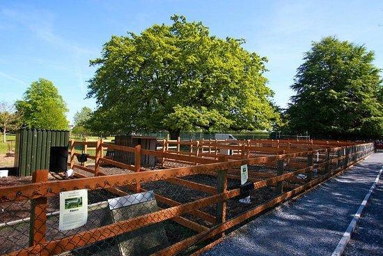 Newpark Hotel Kilkenny Tripadvisor