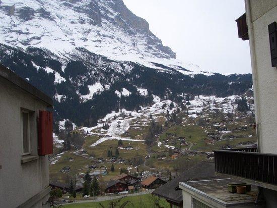 Grand Hotel Regina Grindelwald:                   вид из окна поезда