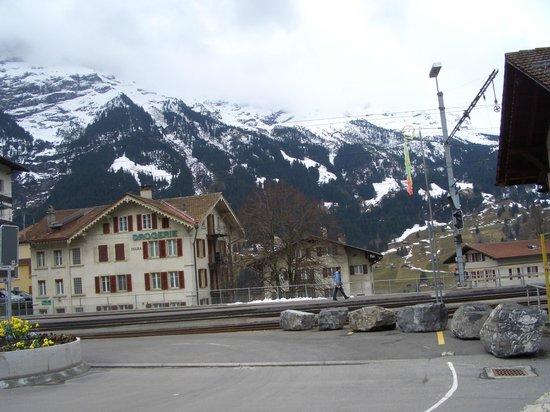 Grand Hotel Regina Grindelwald:                   вид из номера