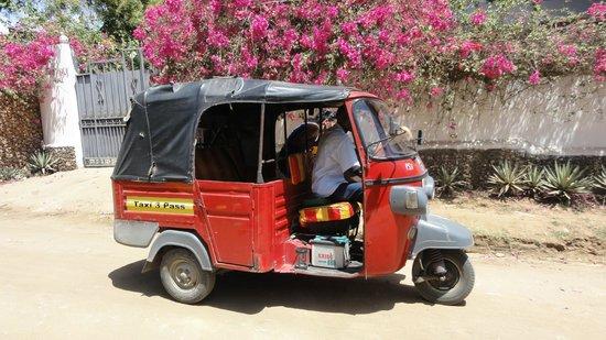 Luna House Malindi:                                     Pour vos transports en ville !