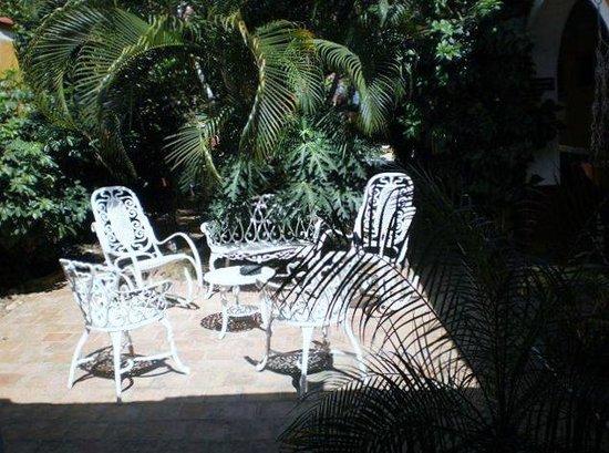 Hostel Yaquelin Arrechea:                                     Detalle del patio.