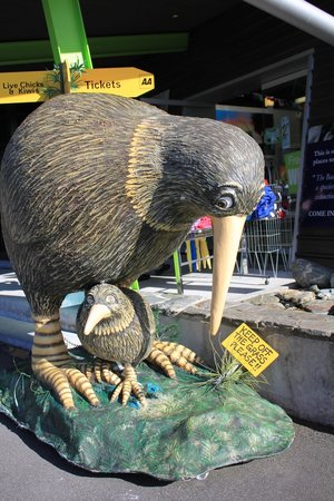 West Coast Wildlife Centre: Too pricey